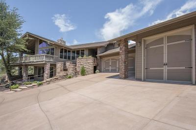 Chaparral Pines Single Family Home For Sale: 2710 E Coyote Mint Circle