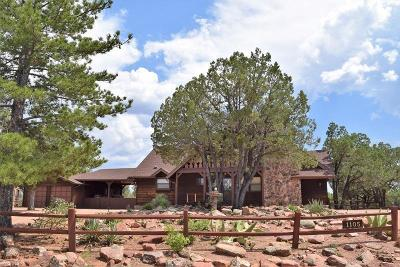 Payson Single Family Home Active w/Contingency: 1105 N Camelot Drive
