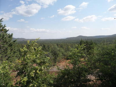 Pine Residential Lots & Land For Sale: 82 N Wickiup Circle