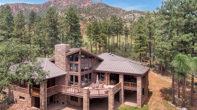 Payson Single Family Home For Sale: 490 N Zane Grey Drive