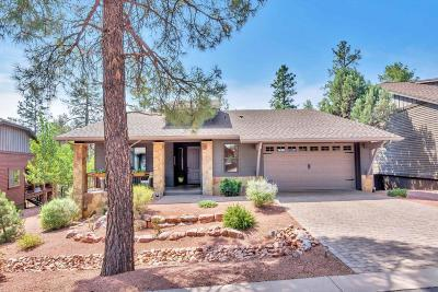 Chaparral Pines Single Family Home For Sale: 1605 E Velvet Mesquite Court