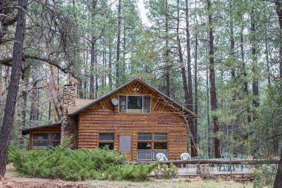 Payson Single Family Home For Sale: 626 N Forest Service Road 199