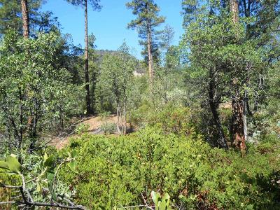 Residential Lots & Land For Sale: 69 Forest Court