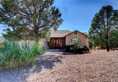 Payson Single Family Home For Sale: 810 N Blue Spruce Circle
