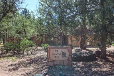 Payson Single Family Home For Sale: 123 S Union Park Drive