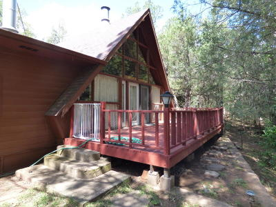 Payson Single Family Home For Sale: 969 Paint Pony Drive
