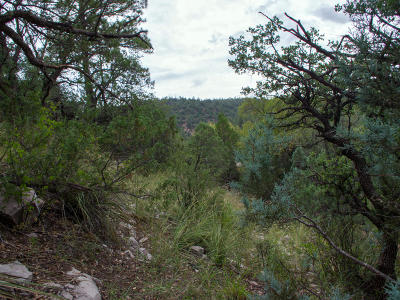 Payson Residential Lots & Land For Sale: 10 and 11 Scott Drive