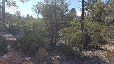 Payson Residential Lots & Land For Sale: 700 N Tyler Parkway