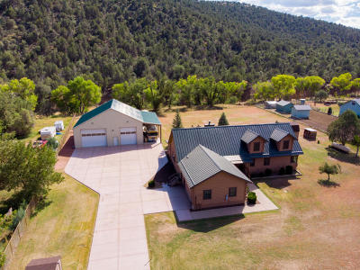 Payson Single Family Home For Sale: 7884 W Gibson Ranch Road