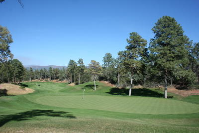 Payson Residential Lots & Land For Sale: 404 S Rim Club Drive