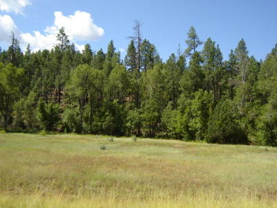 Payson Residential Lots & Land For Sale: Lot 138 S Hunter Creek Drive