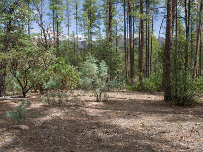 Payson Residential Lots & Land For Sale: 1J Verde Glen