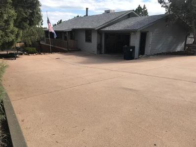 Payson Single Family Home For Sale: 609 N Hogan Drive