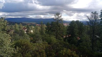 Payson Residential Lots & Land For Sale: 32 Highline Drive