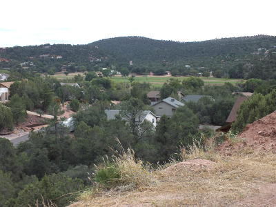 Payson Residential Lots & Land For Sale: 209 S Brassie Drive
