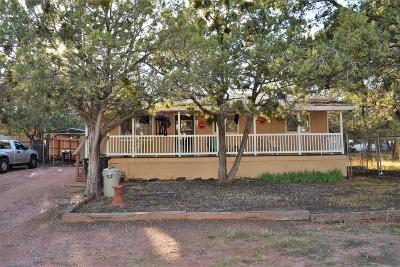 Payson Single Family Home For Sale: 602 N Vista Road