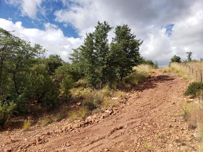 Payson Residential Lots & Land For Sale: 28 Rocking Horse Bend