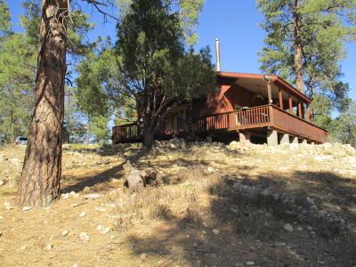 Happy Jack Single Family Home For Sale: 2613 Bull Elk Drive