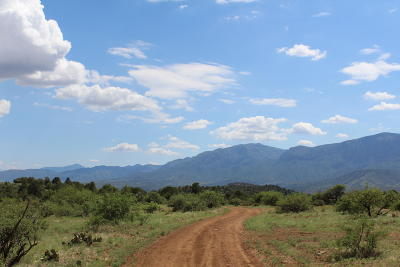 Payson Residential Lots & Land For Sale: W Forest Rd 193