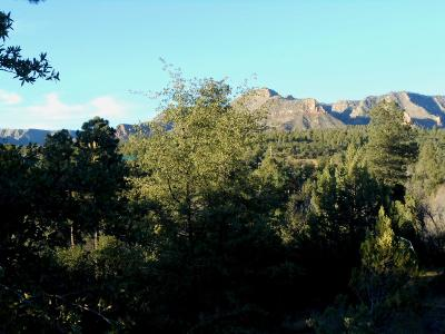Payson Residential Lots & Land For Sale: Lot 5 Myrtle Point Trail