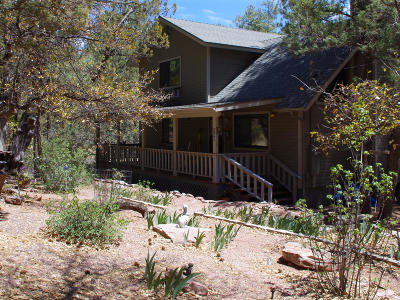 Payson Single Family Home For Sale: 359 S Canyon Drive