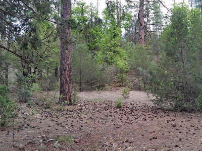 Payson Residential Lots & Land For Sale: 3054 N Neal Drive
