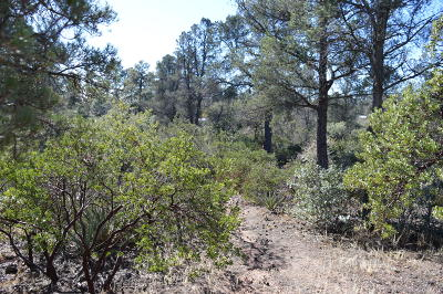 Payson Residential Lots & Land For Sale: Parcel 2 N Maranatha Road