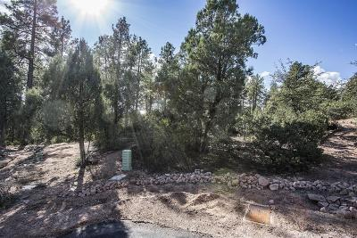 Payson Residential Lots & Land For Sale: 3101 E Indian Ruin