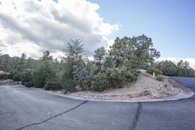 Payson Residential Lots & Land For Sale: 3105 E Indian Ruin