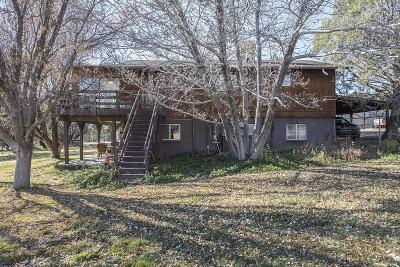 Payson Single Family Home For Sale: 190 N Rose