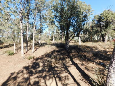 Payson Residential Lots & Land For Sale: 1511 N Wright Circle