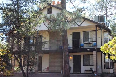Payson Multi Family Home For Sale: 201 E Forest Drive
