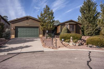 Payson Single Family Home For Sale: 2122 N Cold Springs Point