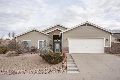 Payson Single Family Home For Sale: 1016 W Rim View Road