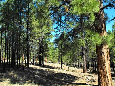 Happy Jack Residential Lots & Land For Sale: 4598 Juniper Drive