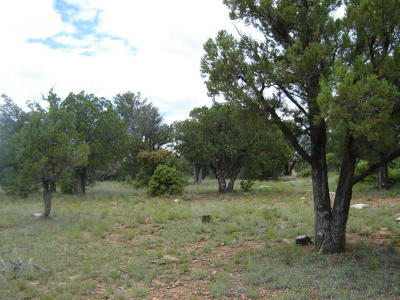 Payson Residential Lots & Land For Sale: 158 S Squirrels Nest Lane
