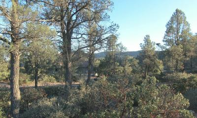 Payson Residential Lots & Land For Sale: 24 S Rim Club Drive
