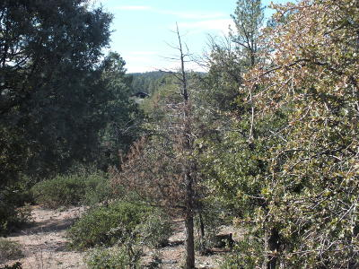 Payson Residential Lots & Land For Sale: 2301 E Scarlet Bugler Circle
