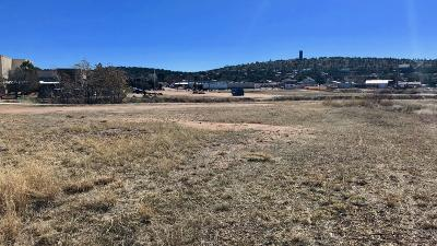 Payson Residential Lots & Land For Sale: 213 W Main Street