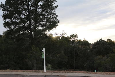 Payson Residential Lots & Land For Sale: 312 S Golden Bear Point