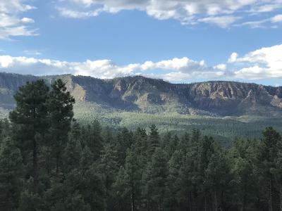 Payson Residential Lots & Land For Sale: 292 Old Rim Trail Lane