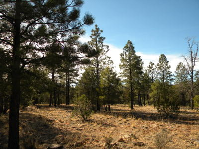 Happy Jack Residential Lots & Land For Sale: 638 Mogollon Trail