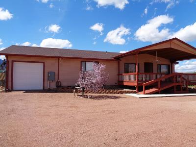 Payson Single Family Home For Sale: 873 N Deer Creek Drive