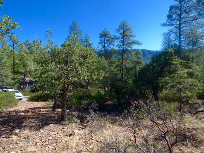 Pine Residential Lots & Land For Sale: 7 N Naco