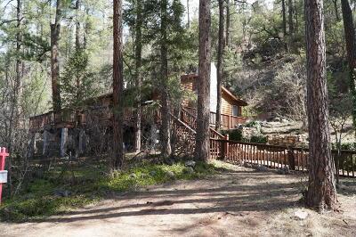 Payson Single Family Home For Sale: 293 S Buenagua Road