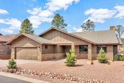 Chaparral Pines Single Family Home For Sale: 1002 N Autumn Sage Court