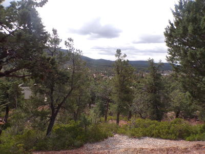 Pine Residential Lots & Land For Sale: Lot 36 Enchanted Circle