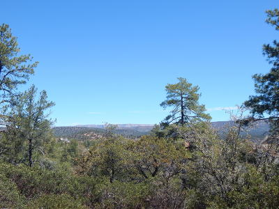 Star Valley Residential Lots & Land For Sale: 416 E Highline Drive