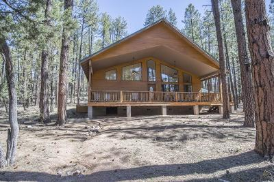 Payson Single Family Home For Sale: 278 E Ring Tail Way