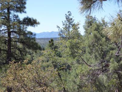 Pine Residential Lots & Land For Sale: 6234 W Pinon Loop